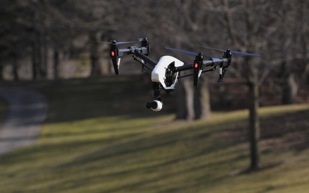 Drone helps winery slash costs